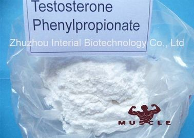 China Medicinal Fat Burning Steroids Testosterone Propionate For Women CAS 1255-49-8 supplier