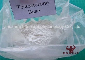 China Professional Strongest Testosterone Steroid Testosterone Base Powder CAS 58-22-0 supplier