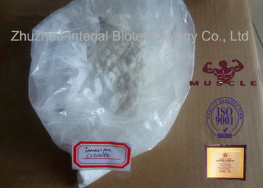China 98% Purity Anti Estrogen Steroids Raw Powders Tamoxifen Citrate / Nolvadex 54965-24-1 supplier