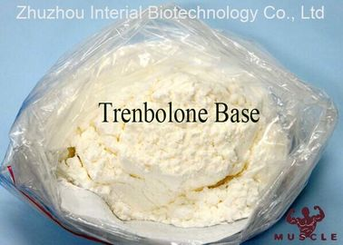 China Bulking Cycle Steroids Tren Muscle Supplement Trenbolone Base CAS 10161-33-8 supplier