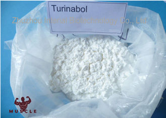 China 99% Purity Strongest Testosterone Steroid Turinabol Clostebol Acetate Legal Muscle Building Powder supplier