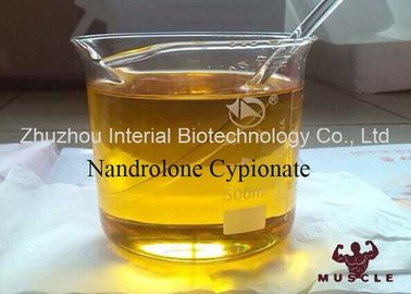 China Pharmaceutical Nandrolone Decanoate Steroid Nandrolone Cypionate CAS 601-63-8 supplier