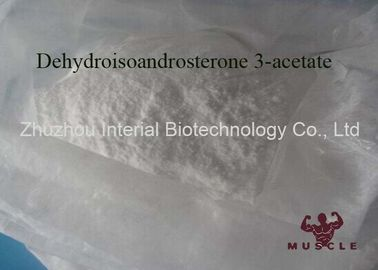 China White Anabolic Raw Steroid Powders DHEA Dehydroisoandrosterone 3 Acetate Cutting Cycle supplier