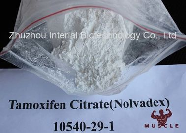 China White Crystalline Raw Steroid Powders Nolvadex Tamoxifen Citrate Bodybuilding CAS 54965-24-1 supplier