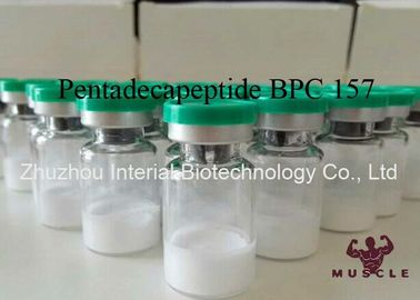 China Injectable Muscle Growth Peptides , Pentadecapeptide BPC 157 Peptide CAS 137525-51-0 supplier