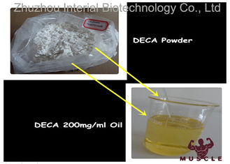 China Effective Nandrolone Decanoate Steroid Deca 200 Injection For Lean Muscle CAS 360-70-3 supplier