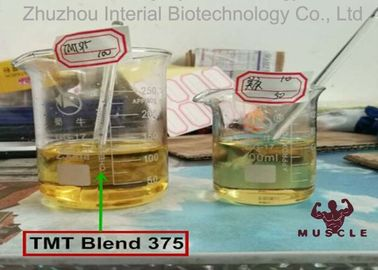 China Pre Mixed Injectable Anabolic Steroids Semi Finished TMT Blend 375 For Bodybuilding supplier