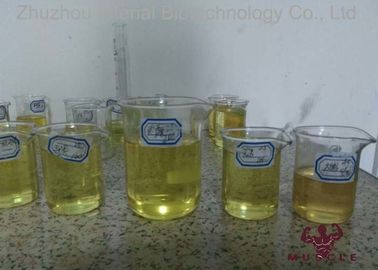 China Medical Injectable Anabolic Steroids Yellow Liquid TM Blend 500 For Athelets supplier