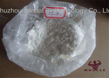 China Raw Anabolic Steroid Hormone Testosterone Cypionate Steroid CAS58-20-8 supplier