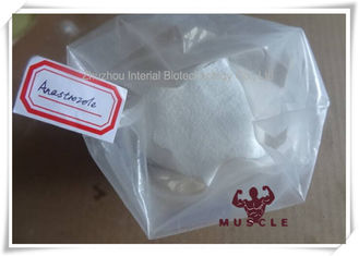 China 99% Purity Anti Estrogen Steroids 120511-73-1 Anastrozoles / Arimidex for Women Breast Cancer supplier