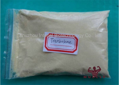 China 99% Muscle Growth Raw Steroid Trenbolone Enanthate Yellow CAS 472-61-546 supplier