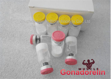 China 99.8% Assay Protein Peptide Hormones Gonadorelin 2mg/vial White Peptides Build Muscle Mass supplier