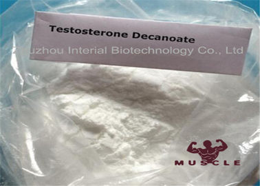 China CAS 5721-91-5 Strongest Testosterone Steroid White Powder Testosterone Decanoate For Muscle Gaining Test Deca supplier