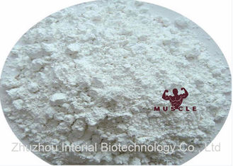 China 99% Assay Strongest Testosterone Steroid Testosterone Undecanoate Powder Andriol Test U supplier