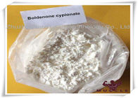 China Boldenone Cypionate White Powder Pharmaceutical Boldenone Steroids 106505-90-2 For Anti Aging Gaining Cut factory
