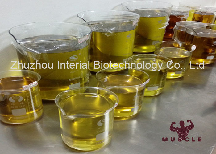Injectable Semi-Finished Anabolic Steroid Liquid Testosterone Enanthate 200mg/ml for Bodybuilding