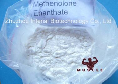 China 99% Min Methenolone Enanthate Primobolan Depot Legal Muscle Steroids CAS 303-42-4 distributor