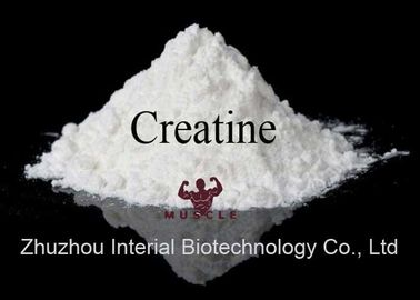China Micronized Creatine Monohydrate Powder Bodybuilding Prohormone Supplements distributor