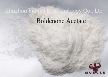 Muscle Building Steroids Boldenone Acetate 2363-59-9 Raw Pharmaceutical Material