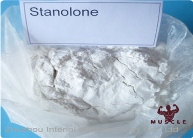 China Synthetic Anabolic Steroid Powder , Androstanolone Powder For Muscle Buliding CAS 521-18-6 factory