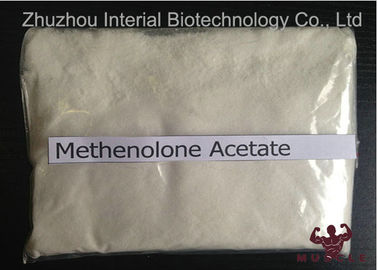 China Enterprise Standard Methenolone Enanthate Fat Stripping Steroids CAS 434-05-9 distributor