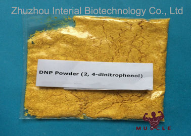 China Effective DNP Weight Loss Steroids 2 4 dinitrophenol powder medicine grade CAS 51-28-5 distributor