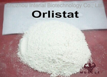Fat Reduce / Weight Loss Steroids Orlistat Powder CAS 96829-58-2 With GMP Standard