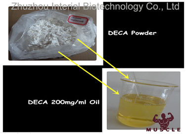 China Effective Nandrolone Decanoate Steroid Deca 200 Injection For Lean Muscle CAS 360-70-3 factory