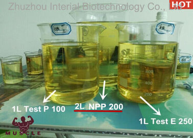China Oil Injectable Nandrolone Phenylpropionate 200mg / Ml Deca Durabolin Steroid factory