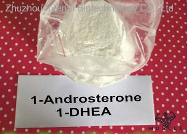 China Fat Loss Prohormones 1 Dhea Powder , 1 Andro Prohormone For Lean Muscle 76822-24-7 distributor