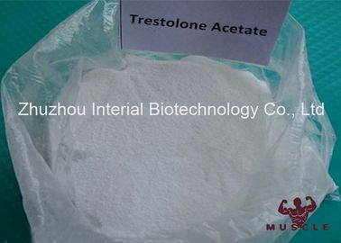 Androgenic Anabolic Muscle Building Prohormones Trestolone Acetate Powder For Bodybuilding