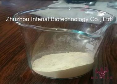 China Powdered Muscle Building Prohormones Mibolerone Anabolic Androgenic Steroids CAS 3704-09-4 distributor