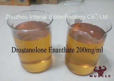 Injectable Anabolic Drostanolone Steroid 200mg / Ml For Bodybuilding CAS 472-61-1