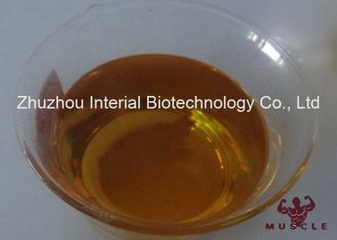 Strongest Injectable Steroids Drostanolone Enanthate 100mg / Ml Injection