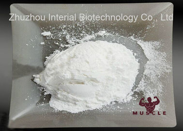 China Raw Steroid Powders Testosterone Steroid Hormone Testosterone Enanthate Powder 315-37-7 distributor