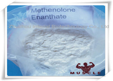 China 99% Purity Methenolone Enanthate/Primobolan Depot Muscle Building Steroids CAS 303-42-4 factory