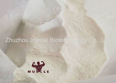 China 99.5% Purity Pharmaceutical Raw Materials Anti-Aging Powder Melatonin for Improve Sleep factory