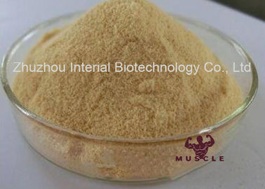 China 20~70% Purity Plant Extract Powder Phosphatidylserine Nutrition Enhancer for Memory Improvement distributor