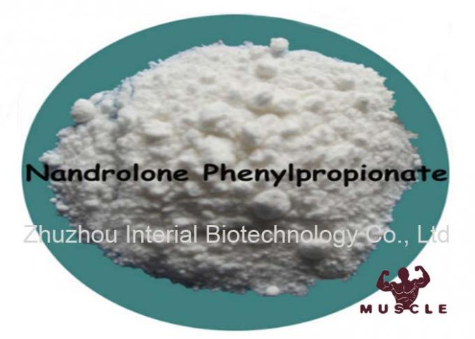 Muscle Gain Bodybuilding Raw Steroid Powders 99.8% NPP / Nandrolone Phenylpropionate Durabolin