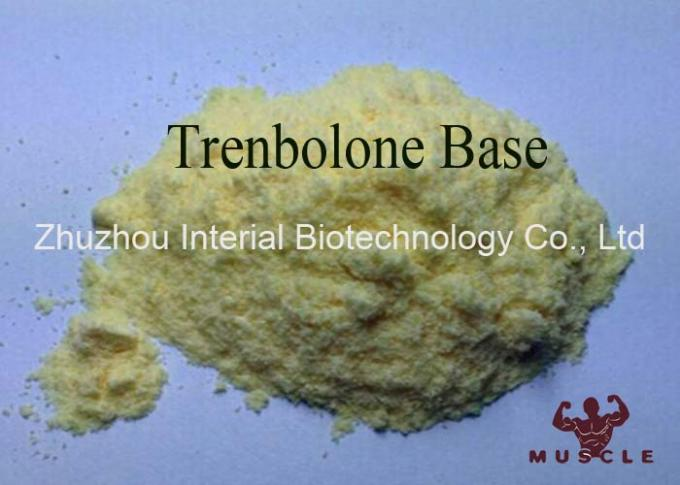 Bulking Cycle Steroids Tren Muscle Supplement Trenbolone Base CAS 10161-33-8