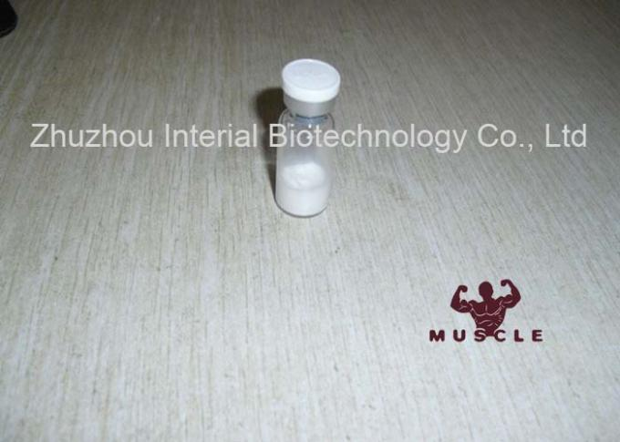 Safety AOD9604 Peptides For Muscle Mass , Weight Loss Peptides CAS 221231-10-3