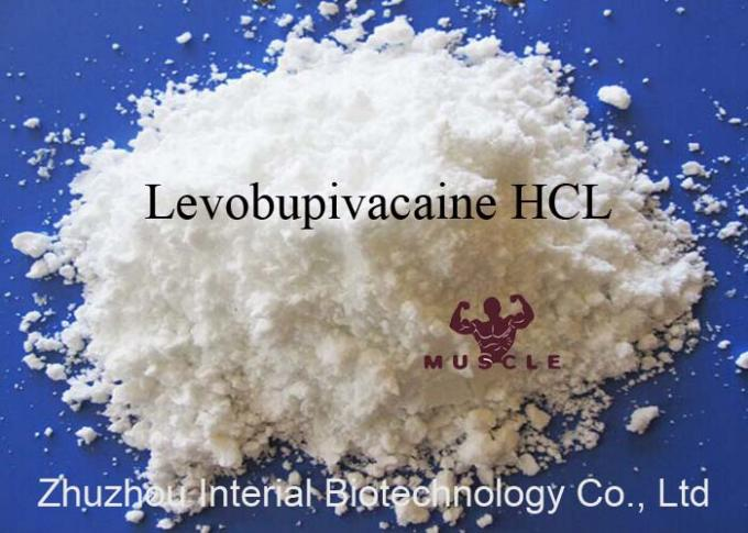 99% Topical Pain Relief Powder Levobupivacaine Hydrochloride CAS 27262-48-2