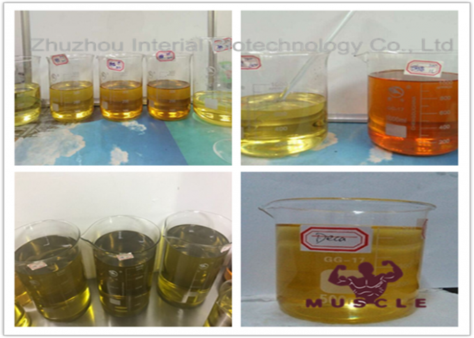 Pre-Mixed Yellow Oil Liquid Trenabolic 80 For Bulking Cycle CAS 10161-34-9